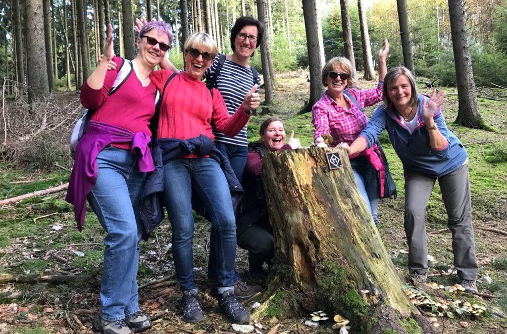 Herbstwanderung  mit goldenem Wetter und guter Herbstlaune  Bielefeld nach Oerlinghausen